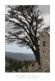 Castelo dos Muros