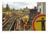 tracks 'n signs