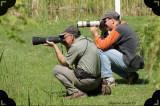 Photographes en action (Men at work)