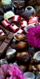 cokoladove_zatisi4.JPG