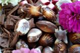 cokoladove_zatisi6.JPG
