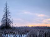Sunset at Jack Pine Trail