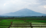 Indonesia from a Train 2009