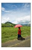 Red riding umbrella