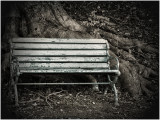 bench and tree_3320.jpg