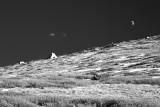 Half Moon Over Colorado High Country
