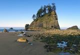 Triangle Sea Stack