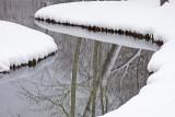 Winter Reflections: Virginia Tech Campus