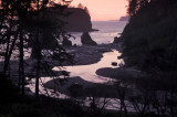 View From Ruby Beach Overlook