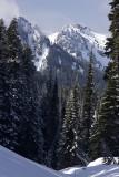 Alpine Vertical