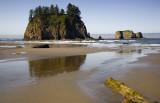 Second Beach Reflection