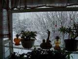 Winter 07-08 Photos