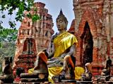 The Buddha enrobed