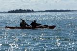 Sur le golfe du Morbihan en semi-rigide - MK3_9602 DxO Pbase.jpg