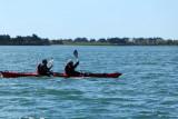 Sur le golfe du Morbihan en semi-rigide - MK3_9605 DxO Pbase.jpg