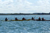 Sur le golfe du Morbihan en semi-rigide - MK3_9606 DxO Pbase.jpg