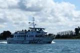 Sur le golfe du Morbihan en semi-rigide - MK3_9615 DxO Pbase.jpg