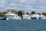 Sur le golfe du Morbihan en semi-rigide - MK3_9657 DxO Pbase.jpg