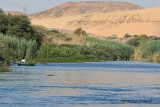 Assouan promenade en felouque - 1092 Vacances en Egypte - MK3_9969_DxO WEB.jpg