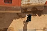 Assouan promenade en felouque - 1137 Vacances en Egypte - MK3_0015_DxO WEB.jpg