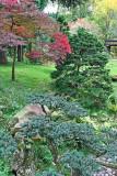Balades printanières et automnales dans le jardin Albert Kahn