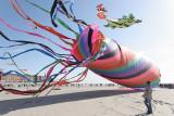 2008 kites international meeting in Berck-sur-Mer - Rassemblement de cerfs-volants à Berck sur Mer