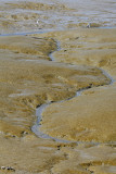 Pbase 782 Vacances 2007 … Quimiac MK3_4902_DXO.jpg