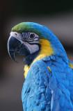 World Wildlife Zoo