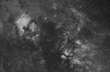 Northern Cygnus with NGC 7000