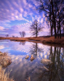 13 Glacial Park, McHenry County, IL