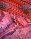 8 Coyote Buttes North, UT-AZ