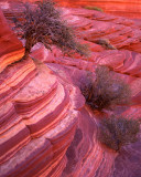 19 Coyote Buttes North, UT-AZ