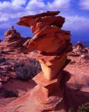 23 Coyote Buttes South, AZ