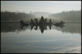 W-2008-02-24 - 0272 - Versailles - Alain Trinckvel-2.jpg