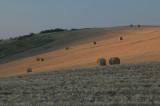 W - 2007-08-04- 0105 - Auvergne - Alain Trinckvel.jpg