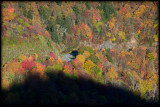 WM-2007-10-20--0548---Great-smoky---Alain-Trinckvel-3.jpg