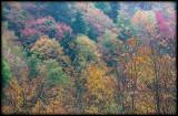 WM-2007-10-20--0679---Great-smoky---Alain-Trinckvel-2.jpg