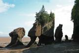 Hopewell Rocks 2.jpg