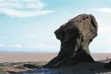 Hopewell Rocks 3.jpg