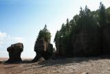 Hopewell Rocks 5.jpg