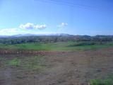 Nadi to Suva bus