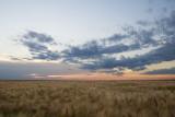 sunset 080908_MG_0076