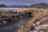 The Crom Mhin bridge, Loch Lomond NNR