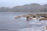 Balmaha Bay, Loch Lomond NNR
