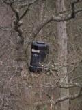 Owl nest box, Loch Lomond NNR