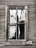 Shredded  curtain