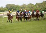 5615c.jpg (Derby Trial Stakes)