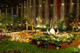 Florissimo 2010 - DIJON  :    la magie de l'eau et des fleurs exotiques