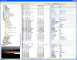 CaptureNX EXIF EXIFsection.jpg