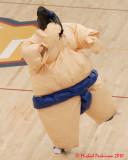Queen's Sumo Follies 2009-2010